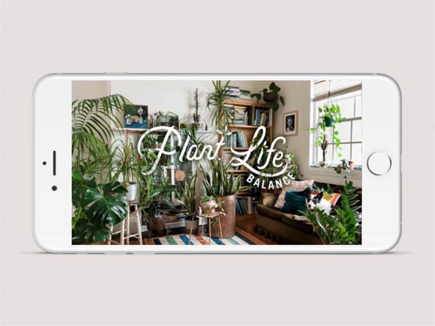 plant life balance: the app
