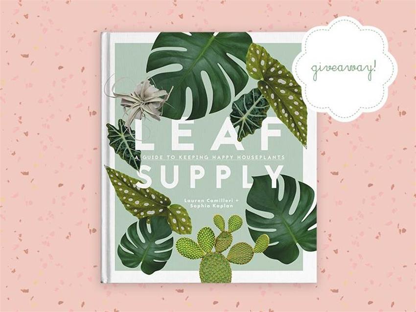 stuff mondays – leaf supply
