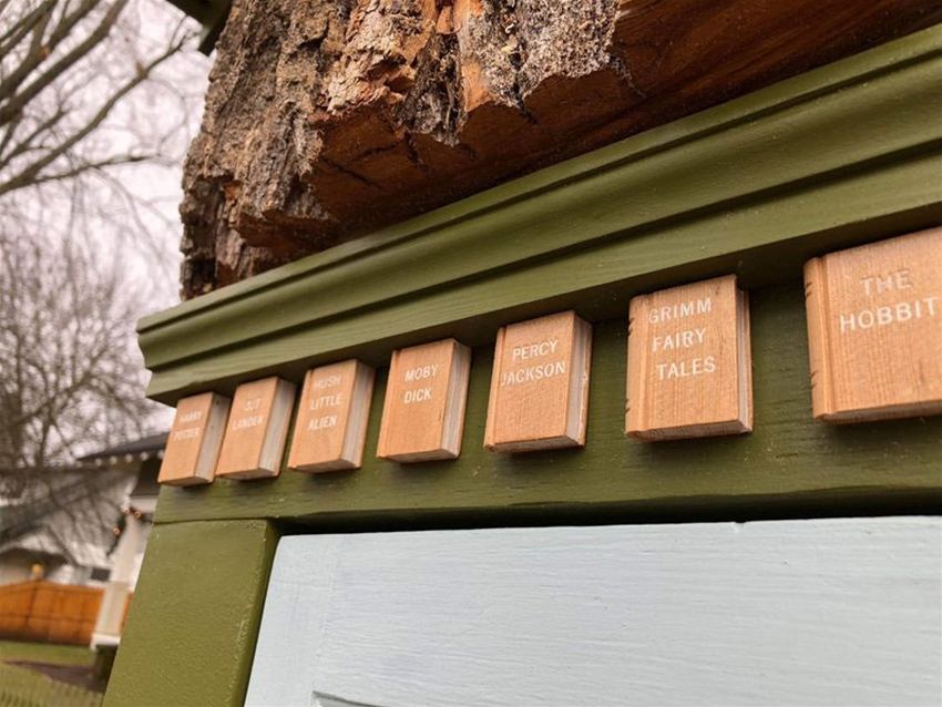 the woodland library