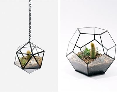 plant atriums