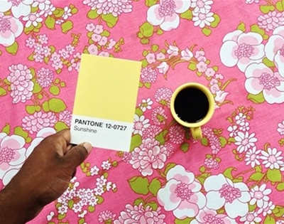 the pantone project