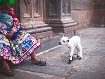 travel interview: peru (and a happy new year!)