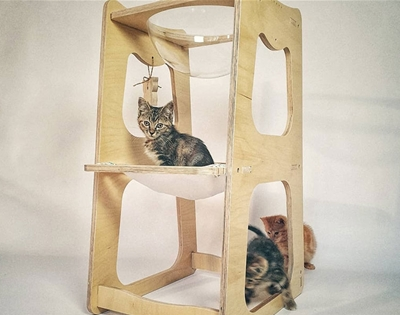 wooden goodies for cats