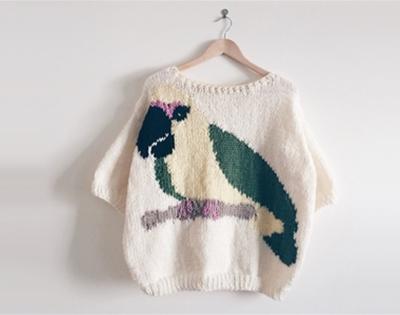parrot sweater pattern