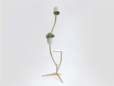 a lamp, table and flowerpot in one
