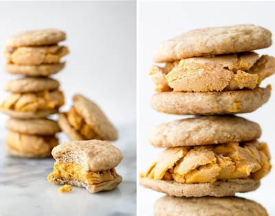 snickerdoodle and pumpkin ice cream sandwiches
