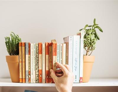pot plant bookends