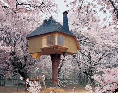 japan's fairytale treehouse