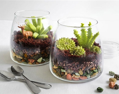 terrariums for dessert