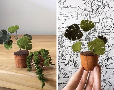plush plants