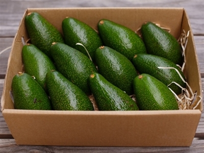 throwback thursday - barham avocados