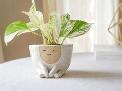 one happy planter