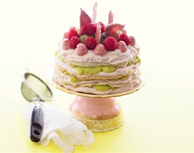frankie fodder: kiwi and raspberry daquoise torte