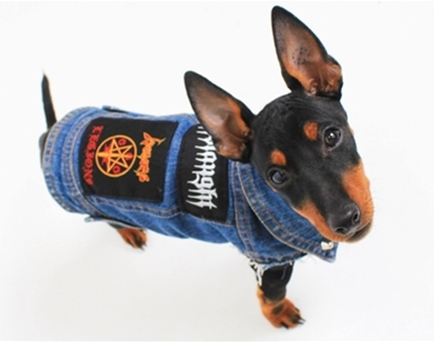 metal patches for dogs