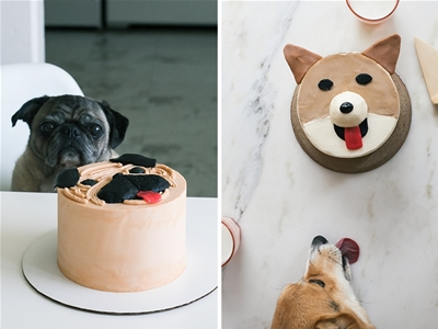 a corgi cake and a pug cake