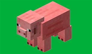 Minecraft Trivia Quiz 14