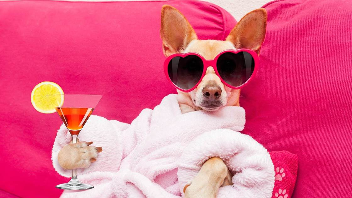 5 Hangover Cures That Actually Work (Plus 4 That Really Don't)
