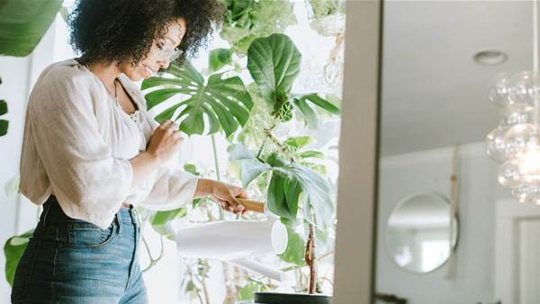 10 Air-Purifying Plants That Create a Healthier Home