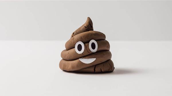 8 Completely Normal Poop Questions You've Been Too Afraid to Ask
