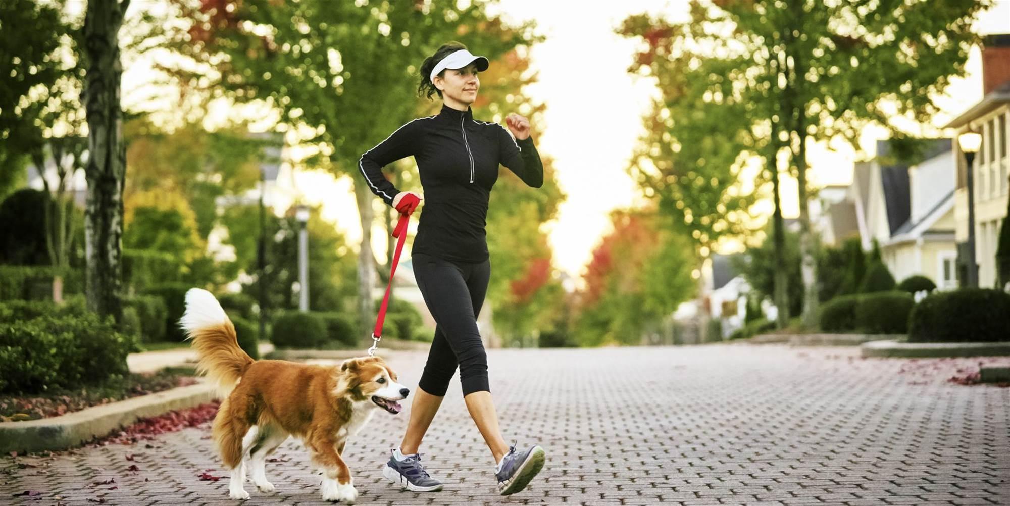 6 Speed Walking Tips to Burn kJs like you're Running