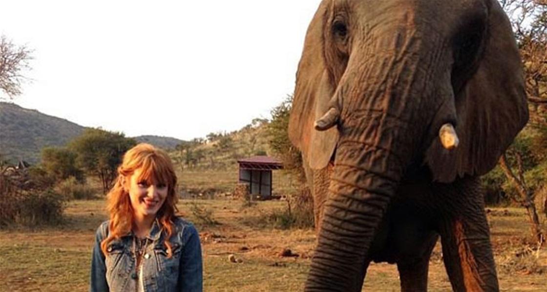 Bella's African Safari