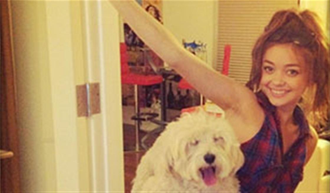 Sarah Hyland Adopted A Puppy!