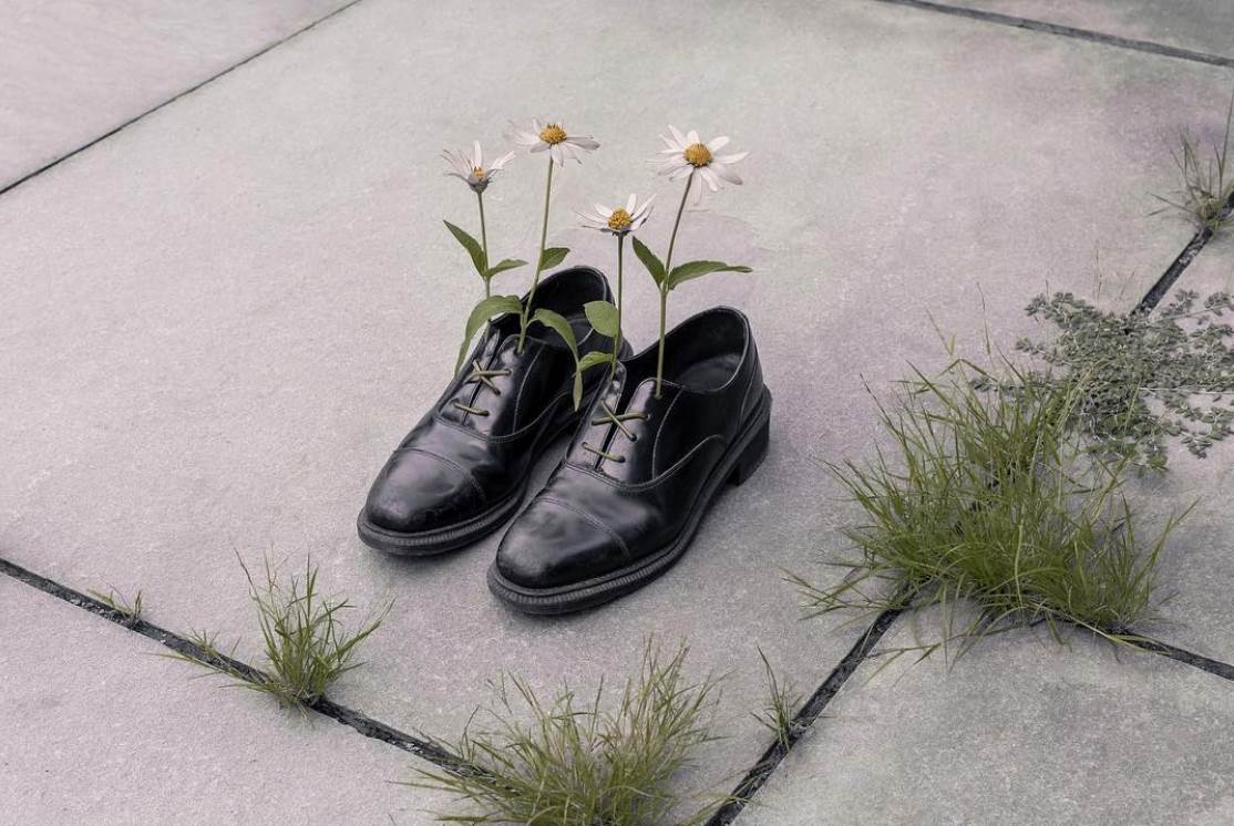 brooke didonato 5 copy