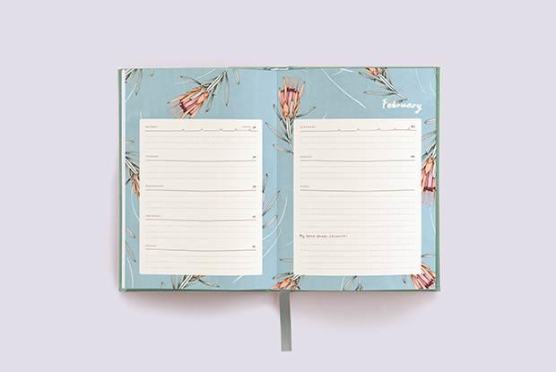 diary open feb 620x415 blog full width