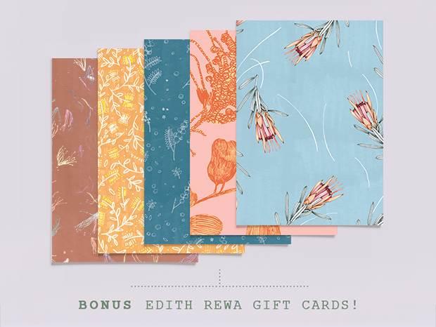 edith card blog full width