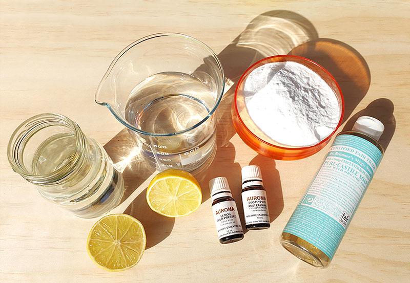 frankie exclusive diy natural cleaning paste ingredients
