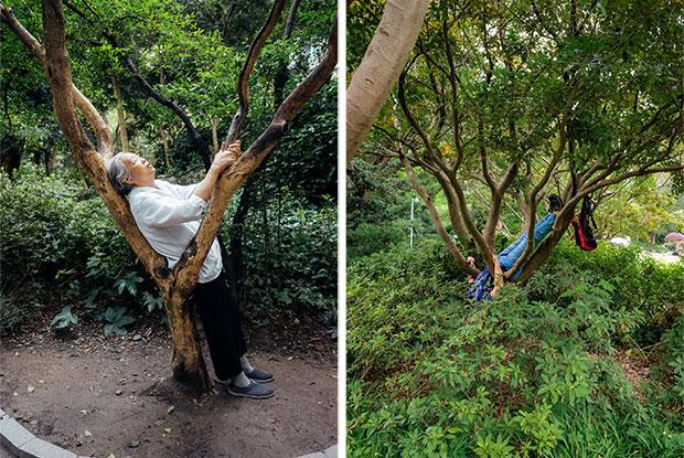frankie ryan harding old people sleeping in parks