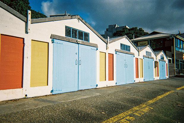 frankie x wellington new zealand houses