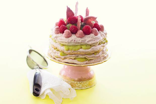 kiwi raspberry torte 1