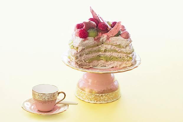 kiwi raspberry torte 12