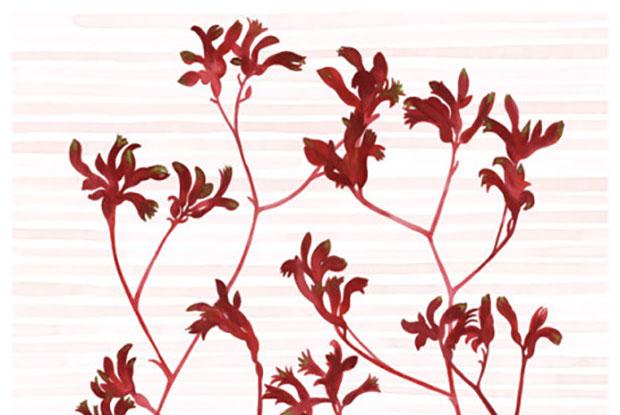 meander botanical blog