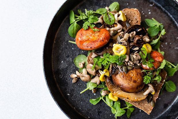 mushroom toast frankie fourside INSIDE