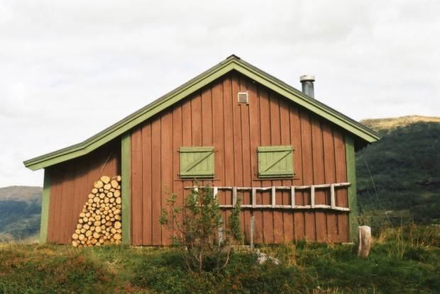 norwegian cabin 10