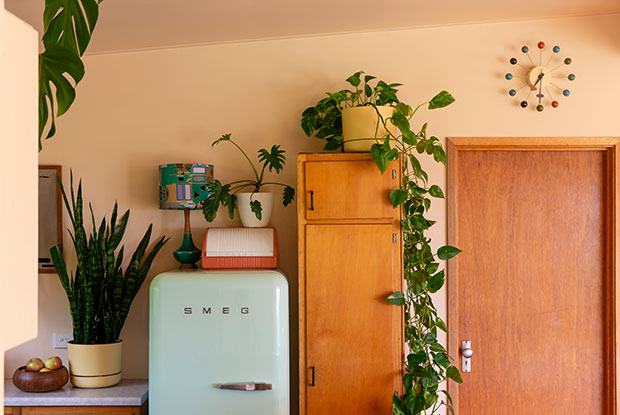 spaces sass cocker fridges