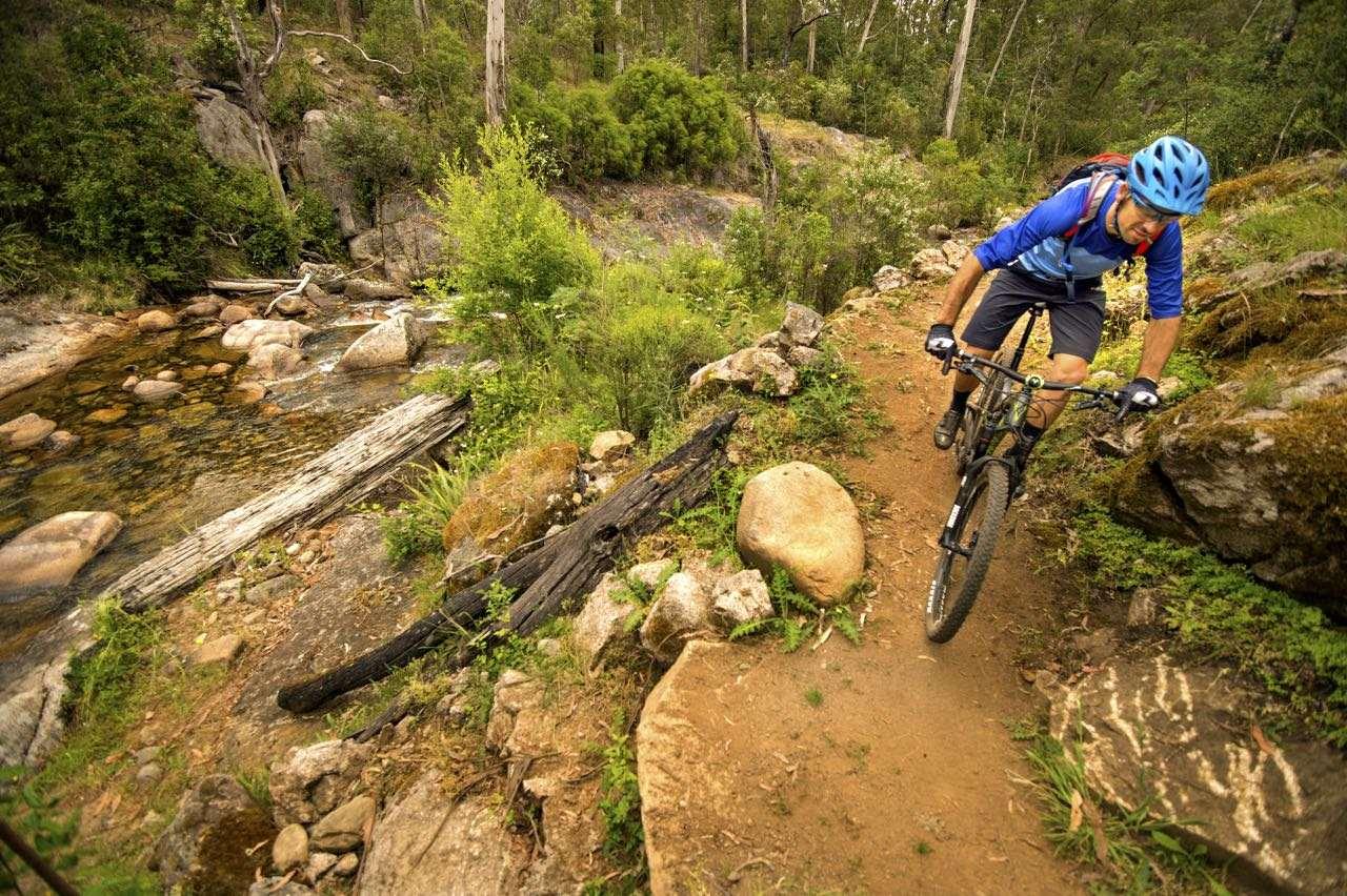 Australias Epic Alpine Journey The Mt Buller Epic Trail