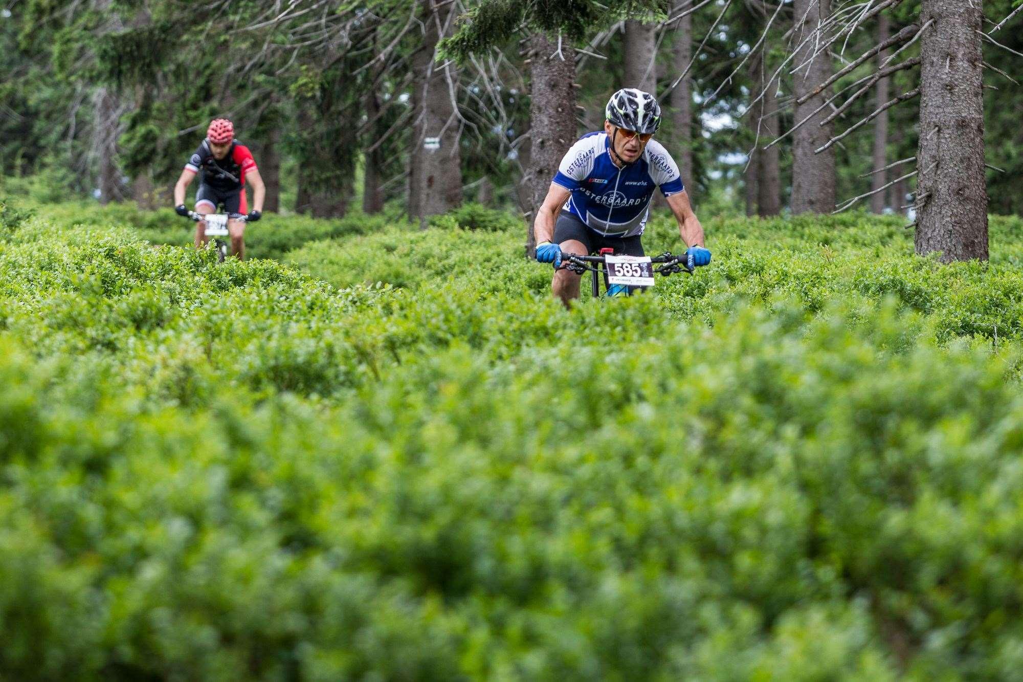 Riding the Sudety MTB Challenge - Australian Mountain Bike