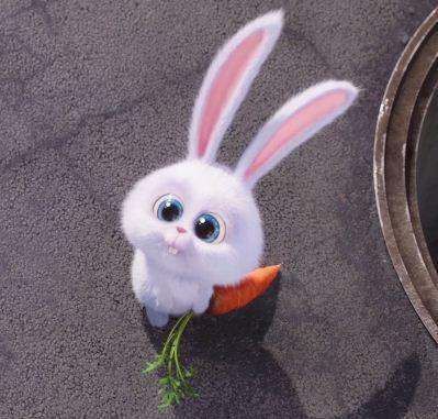 Đep Khong Quy Vi? Cute-bunny
