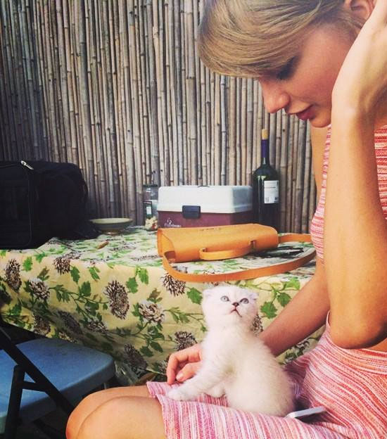 Photo: Taylor Swift and her new pet kitten Olivia!