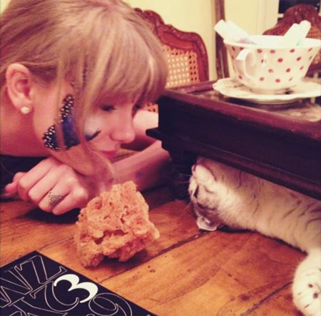 Taylor Swift (with a facepaint butterfly) and her cat Meredith!