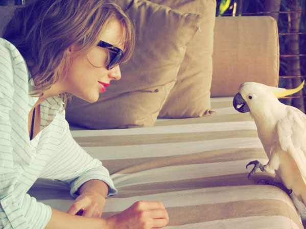 Taylor Swift and Cockatoo
